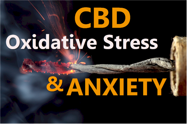 cbd, oxidative stress, and anxiety