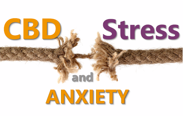 how does cbd affect stress and anxiety