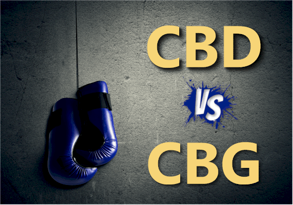 CBD versus CBG based on real research