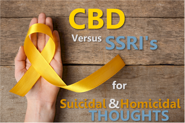 CBD versus ssri for suicidal and homicidal thoughts