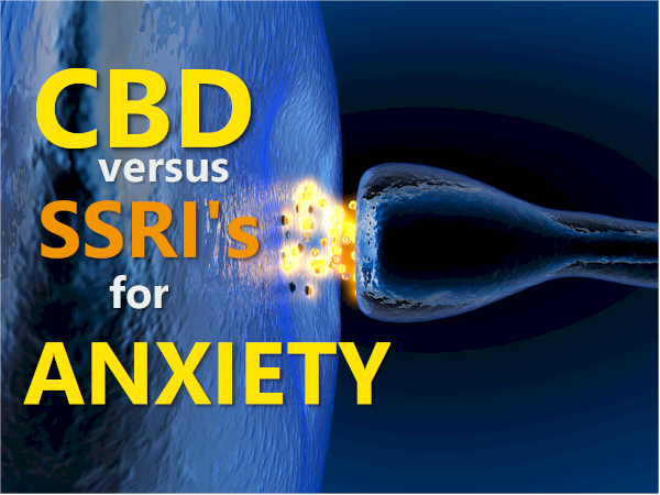 compare cbd versus ssri for serotonin and anxiety or depression