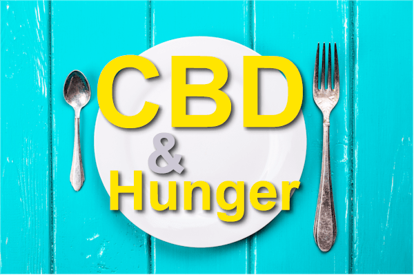 does cbd make you hungry - CBD and appetite
