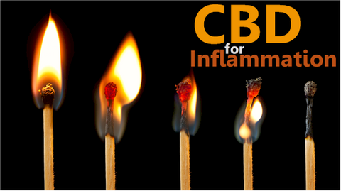How does CBD work for women's inflammatoin