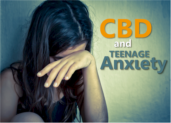 How does cbd work with teen anxiety