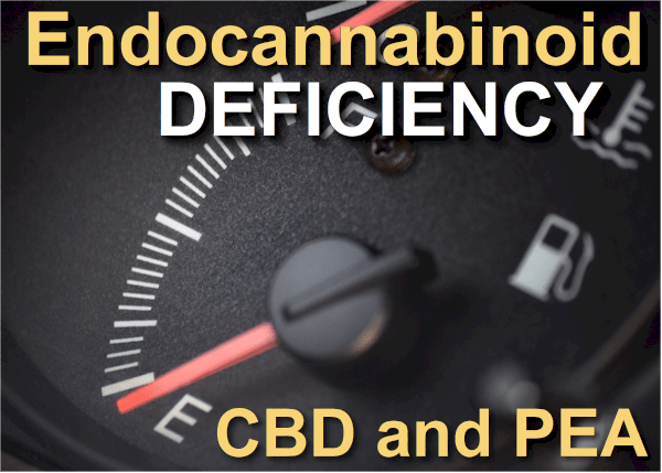 CBD and PEA for Endocannabinoid Deficiency