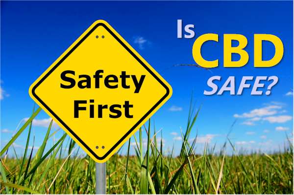 Is CBD Oil Safe to Take