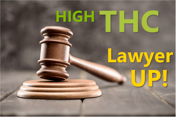 legal liability for high thc sellers and market