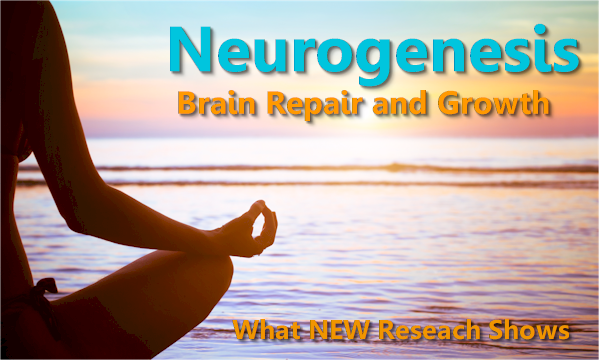 cbd metitation exercise for neurogenesis for brain repair