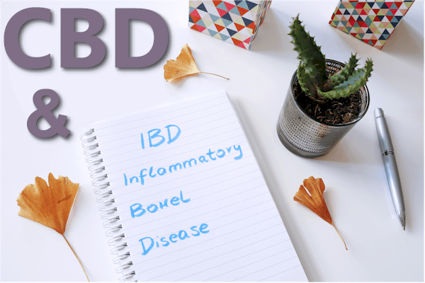 CBD research and IBD IBS and Gut inflammation