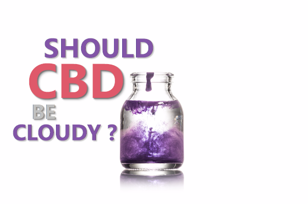 should cbd be cloudy