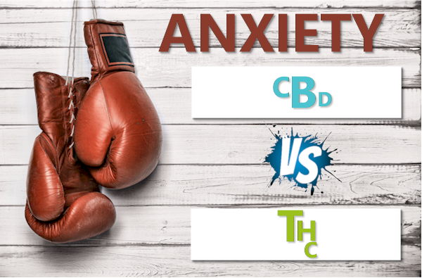 THC or weed versus CBD for anxiety