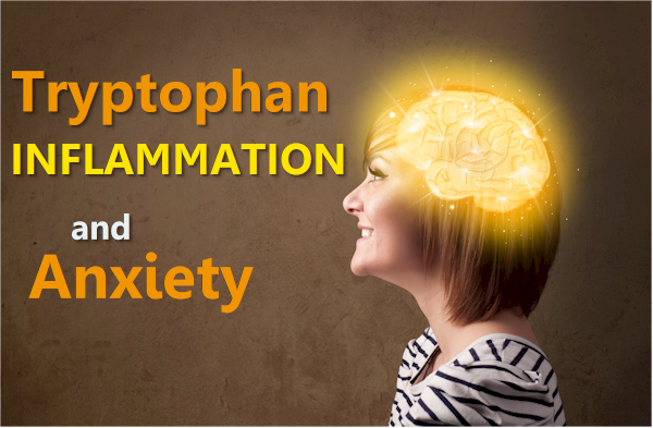 tryptophan key to anxiety and inflammation