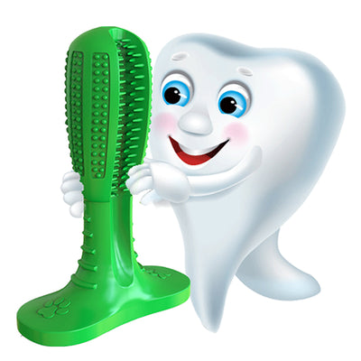 Teeth Cleaning/Dog Toothbrush/Dog Chew Toys/
