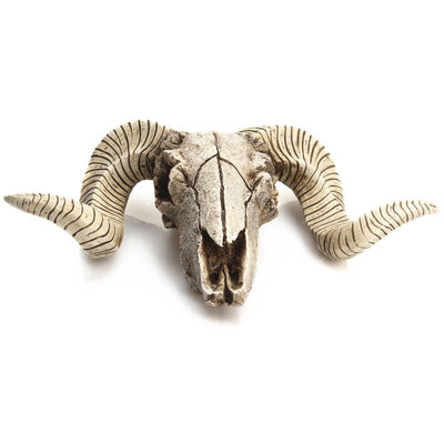Sculpture Resin Sheep Skull Wall Hanging
