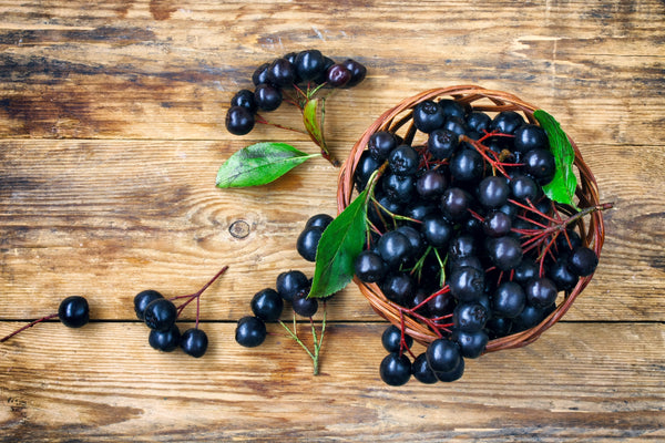 aronia berries in basket