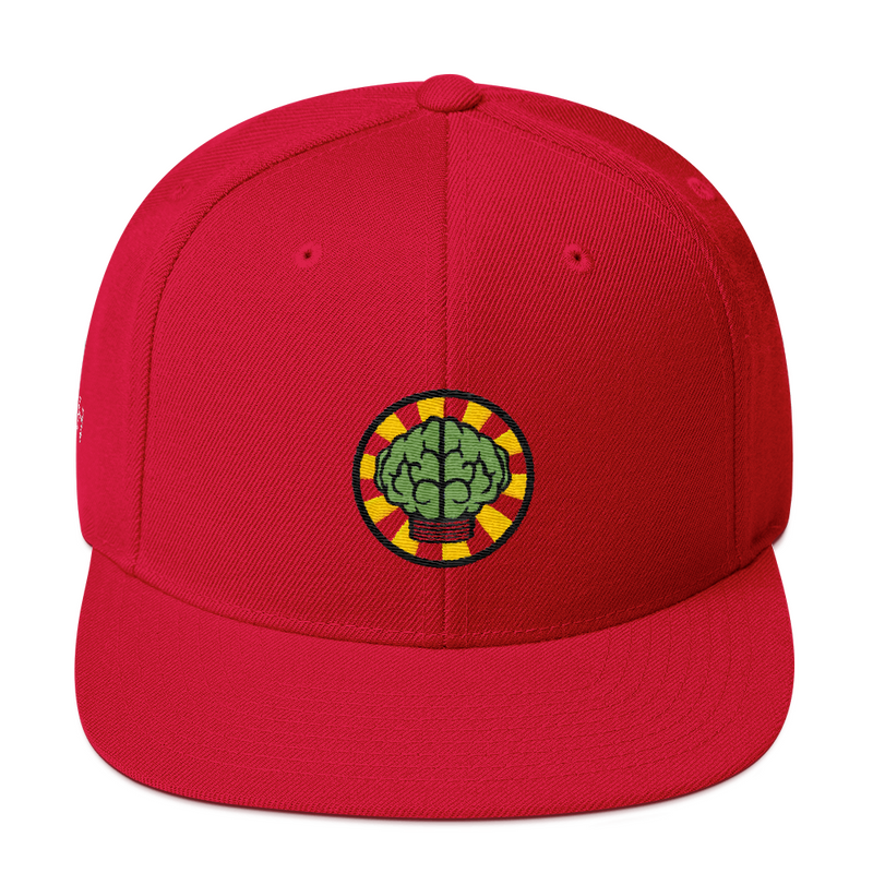 NERD Brain logo embroidery Snapback Cap. Pharrell Williams, Chad Hugo & Shay Haley.-Red-Archethype