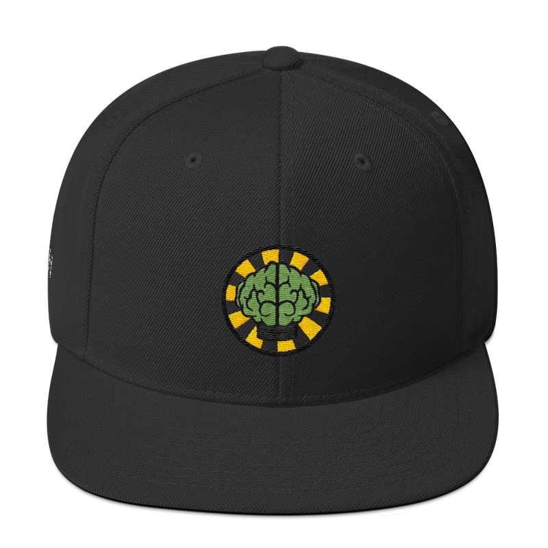NERD Brain logo embroidery Snapback Cap. Pharrell Williams, Chad Hugo & Shay Haley.-Black-Archethype