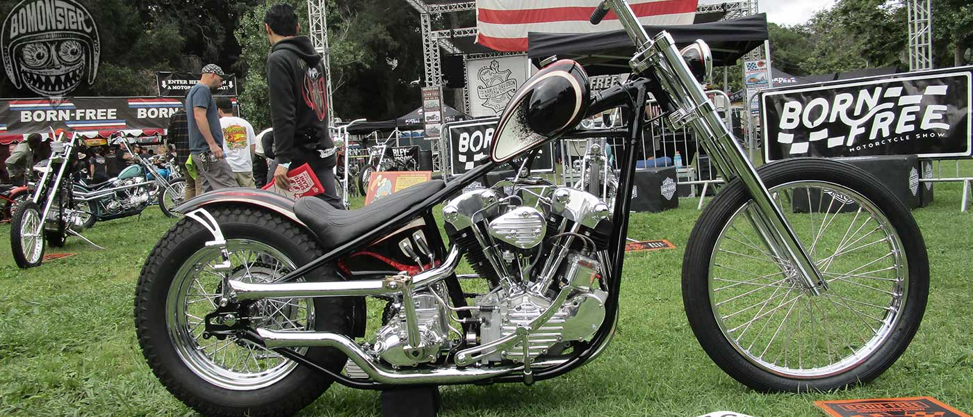 harley knucklehead chopper born free show
