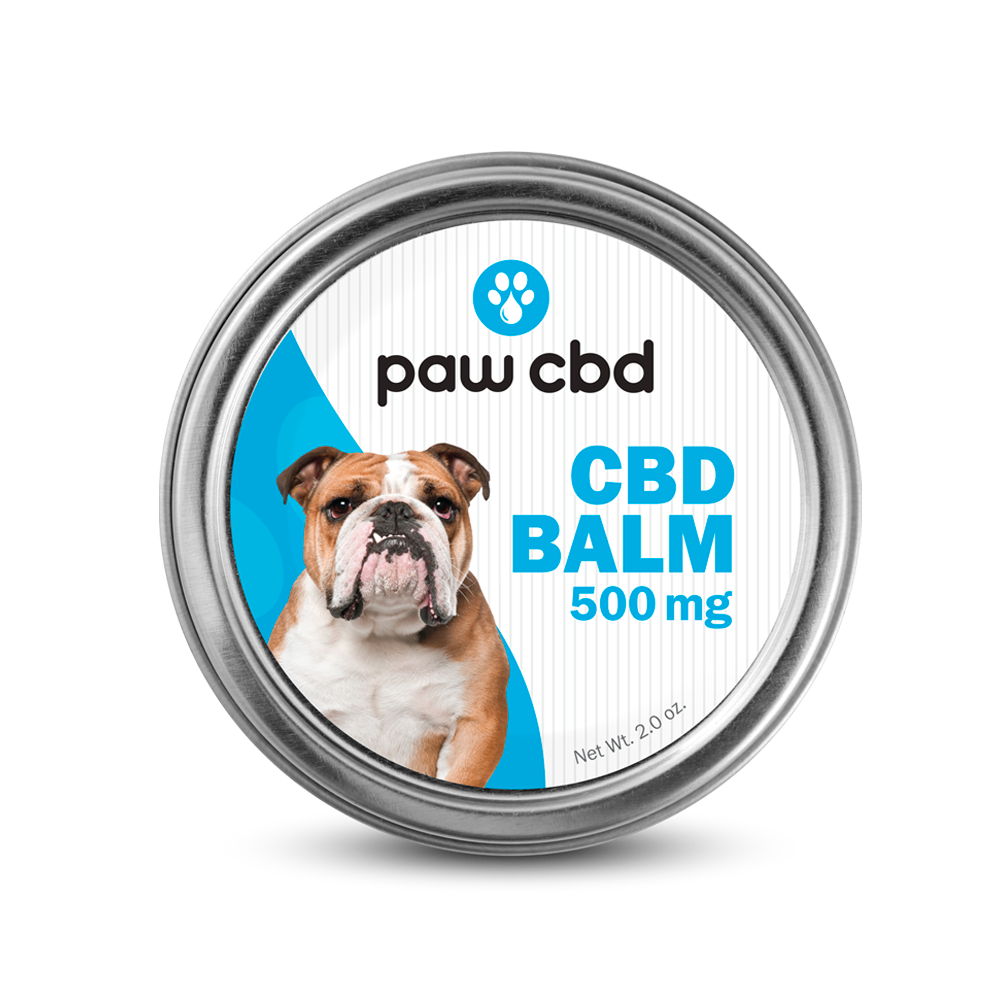 cbdMD Pet 500mg CBD Balm
