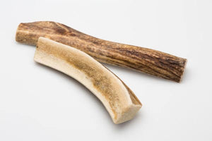 Little Buddy Elk Antler Chew 100mg