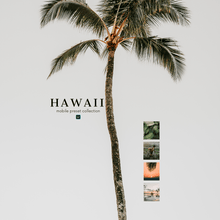 Load image into Gallery viewer, Hawaii Collection - Desktop