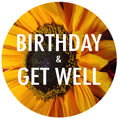 Birthday / Get Well