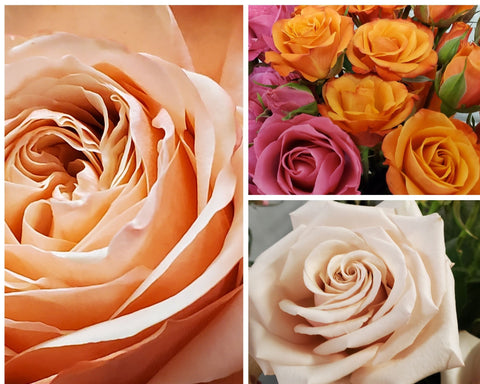5 Stand Out Flower Choices