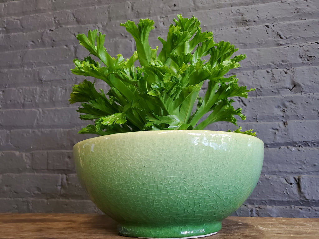 Yarn Bowls in green small