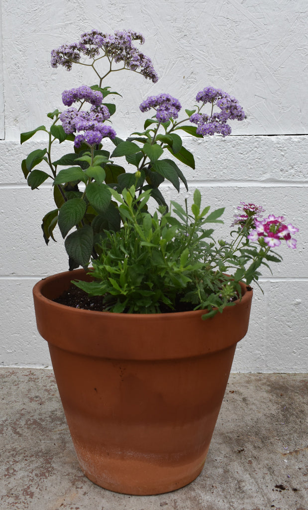 Terracotta outdoor planter