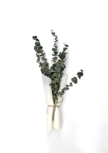 Market Bunch-Preserved Eucalyptus
