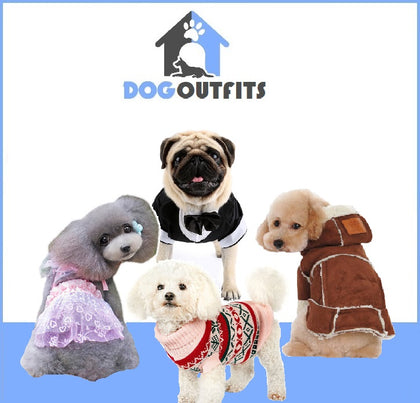 Dog Outfits