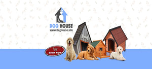 Collection of Wooden Dog Houses, Plush Dog Houses, Luxury Dog Houses and more!