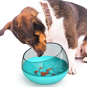 PETDURO Dog Bowl Slow Feeder for Small Medium Breed Maze Puzzle Bowls