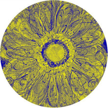 Summer Sunflower Round Beach Towel - Yellow Blue