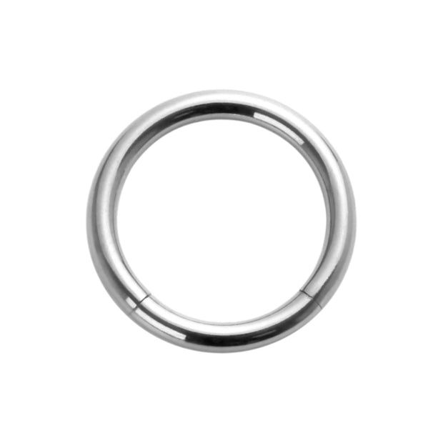 1 Piece 316L Stainless Steel Seamless Segment Lip Nose Ear Ring | Body Jewellery | PFG Wholesale