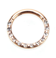 365 Sleepers 1 Piece Titanium Gem Hinged Segment Ring - 16G - PFGWholesale