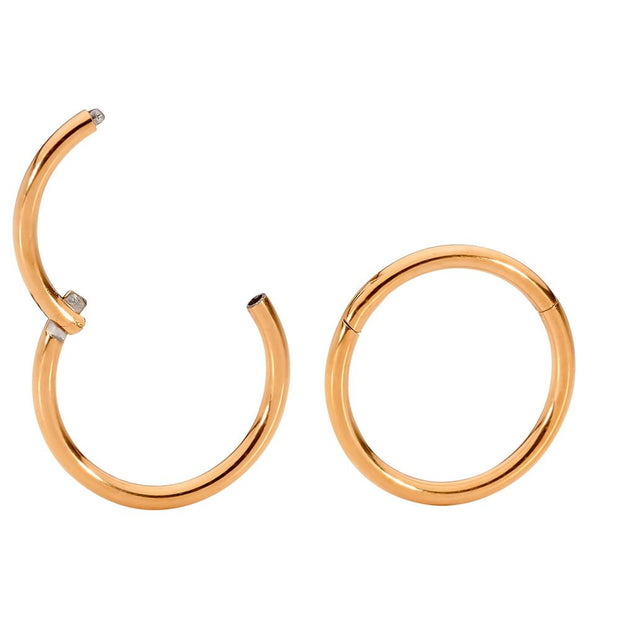 1 Pair Titanium Sleeper Earrings - 20G | Body Jewellery | PFG Wholesale