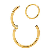 1 Piece Titanium Segment Ring - 12G - Sold Individually | Body Jewellery | PFG Wholesale