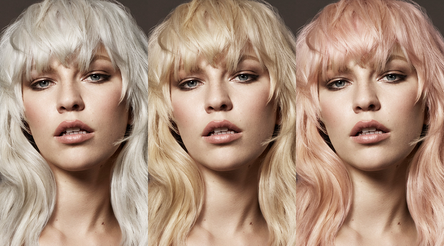 Toni & Guy Colour Menu