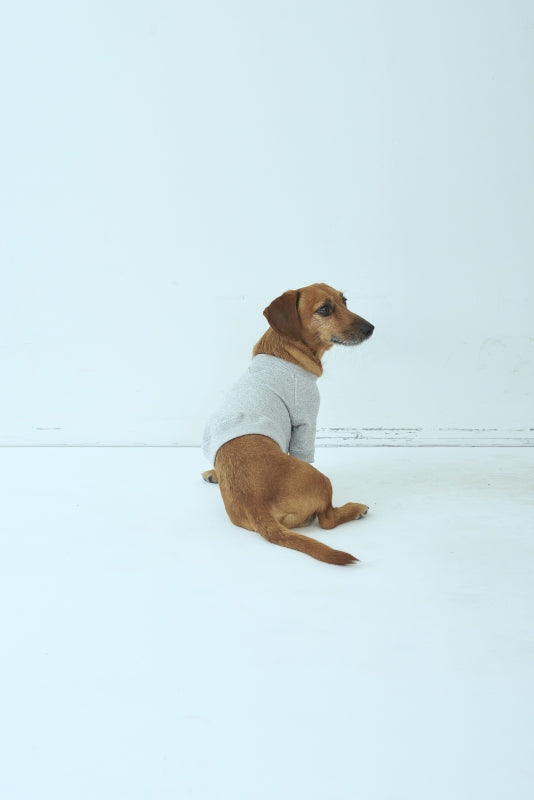 SEA x S for DOG Vintage Sweatshirt