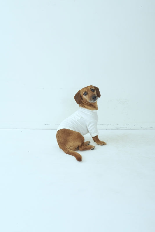 SEA x S for DOG Vintage Crewneck Pocket Tshirt