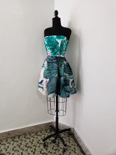 Image Diary Collaboration:  Inside the Green Dress