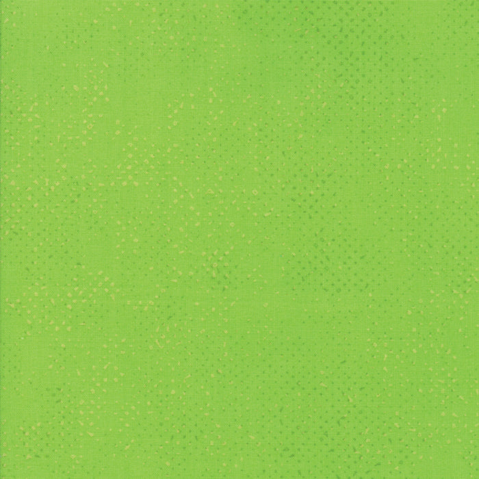 Zen Chic - Spotted Lime | 1660-48