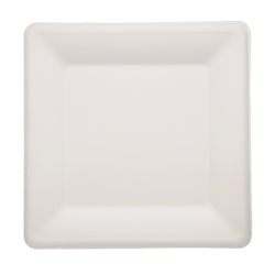 SUGARCANE (BAGASSE) PLATES SQUARE 260 mm X 260 mm, Case of 500