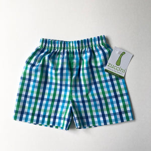 Blue & Green Plaid Shorts