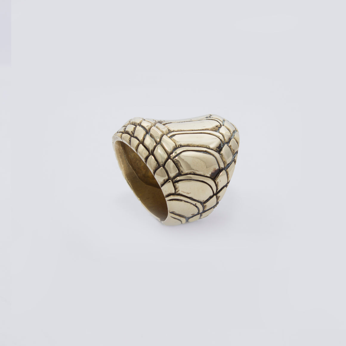 SNAKE SKIN MOTIF RING IN YELLOW BRASS (CIRCULAR)