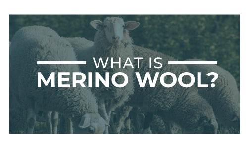 learn more about merino wools benefits here and see what you have been missing