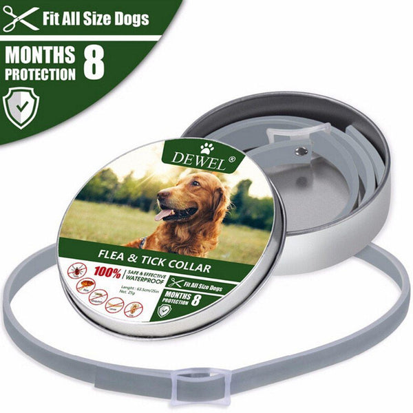 Long Lasting Flea and Tick Pet Collar - Quickway Gadgets