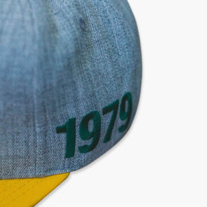 Hat - Seattle SuperSonics Grey & Gold 1979 Snapback Hat