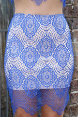 For Love & Luck Blue & Nude Lace Skirt